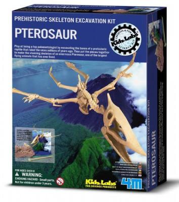 """Ausgrabungsset """"Pterandon"""""""