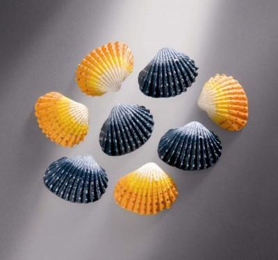 Muscheln gelb/blau